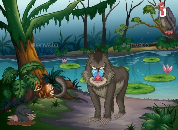 Animals and Pond - People Characters