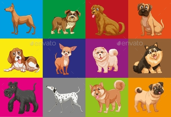 Dogs in Squares - Animals Characters