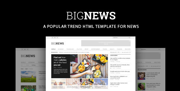 Bignews – News & Magazine Template
