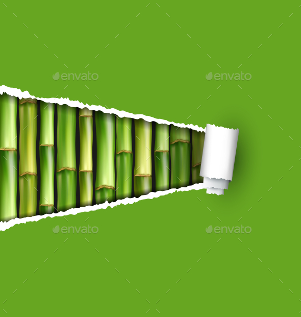 Green Bamboo Grove with Ripped Paper Frame - Flowers & Plants Nature