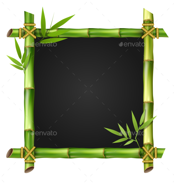 Bamboo Grass Frame with Leafs Isolated on White - Flowers & Plants Nature