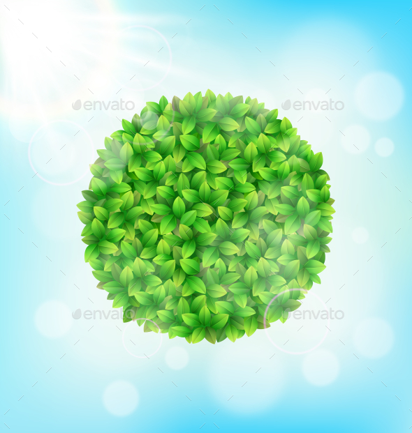 Green Leaves Circle Frame with Sun on Blue Sky - Flowers & Plants Nature
