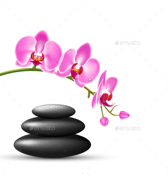 Stack of Spa Stones with Pink Orchid Flowers - Nature Conceptual