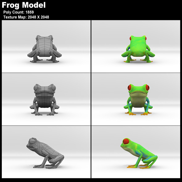 Red Eyed Tree Frog Model - 3DOcean Item for Sale