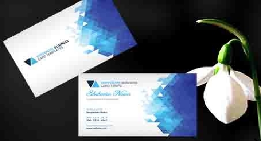 Geometric  Business Card