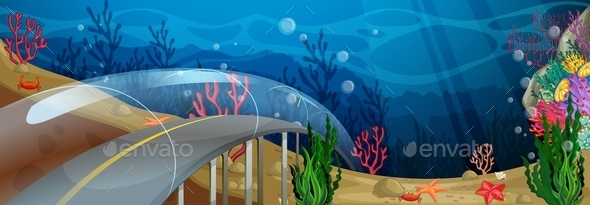 Road Underwater - Landscapes Nature