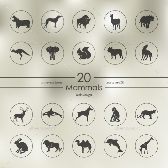 Set Of Mammals Icons - Icons
