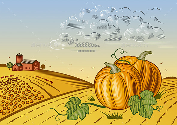 Pumpkin Harvest Landscape - Landscapes Nature