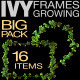 Ivy Frames Growing Pack - VideoHive Item for Sale