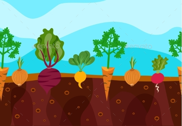 Growing Vegetables Illustration - Flowers & Plants Nature