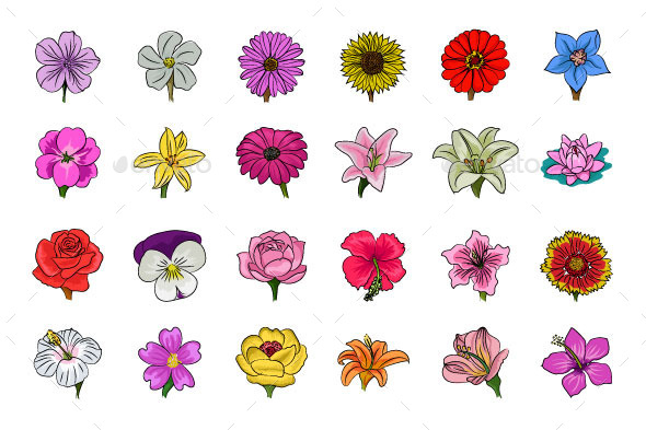 Floral Hand Drawn Colored Icons - Icons