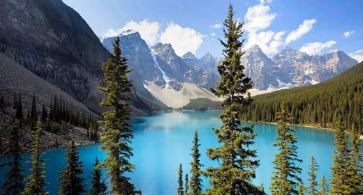 Wild Places