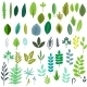 Leaves Set - GraphicRiver Item for Sale