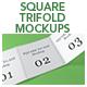Square Trifold Mockups - GraphicRiver Item for Sale