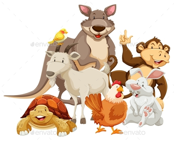 Animals - People Characters