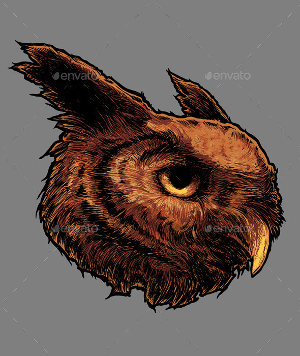 Owl Head Vector - Animals Characters
