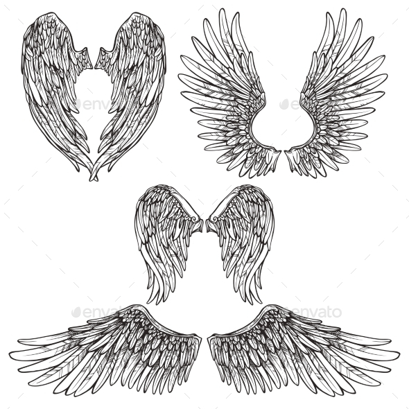 Wings Sketch Set - Animals Characters