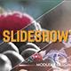 Clean Elegant Slideshow - VideoHive Item for Sale
