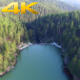 Aerial Flying Over Dam in the Pine Forest - VideoHive Item for Sale