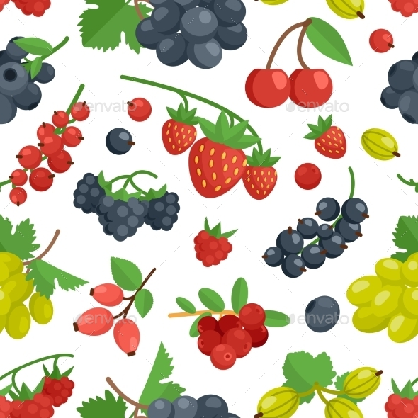 Berries Color Seamless Ornament - Nature Conceptual