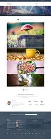 18 portfolio v5.  thumbnail