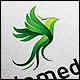 Giomedic - Green Parrot