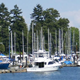 Harbor Sailboats and Park - VideoHive Item for Sale