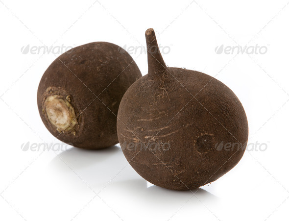 black radish - Stock Photo - Images