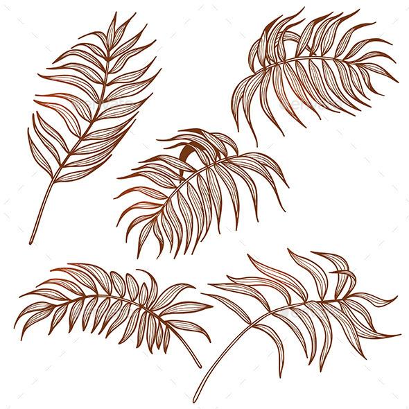 Palm Leaves Set - Flowers & Plants Nature