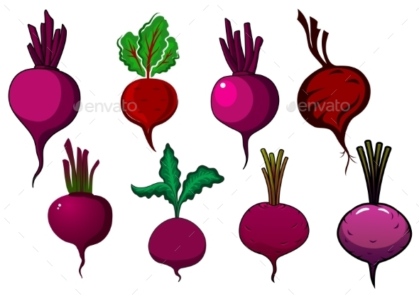 Purple Beets Vegetables With Stalks And Leaves - Food Objects