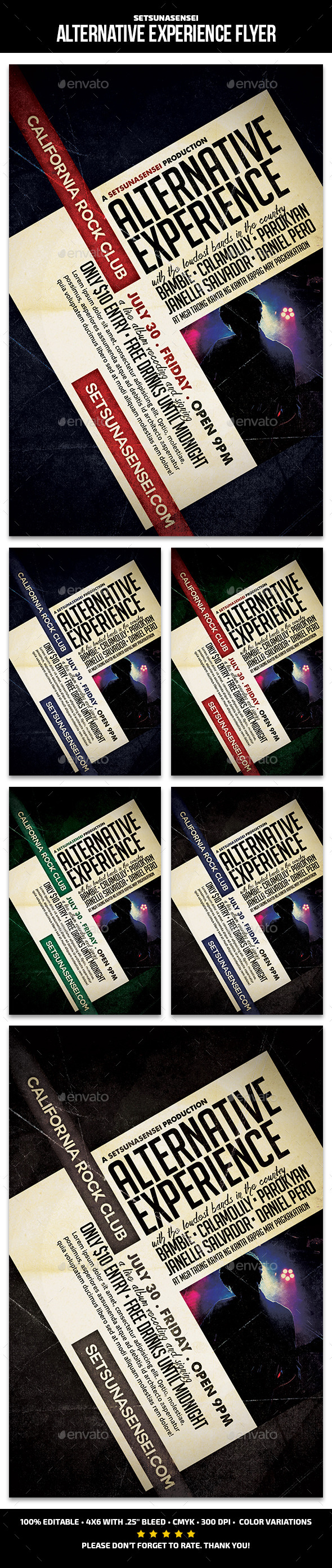 Alternative Experience Flyer - Concerts Events