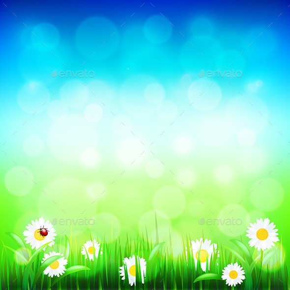 Green Grass and Blue Sky with Flowers - Landscapes Nature