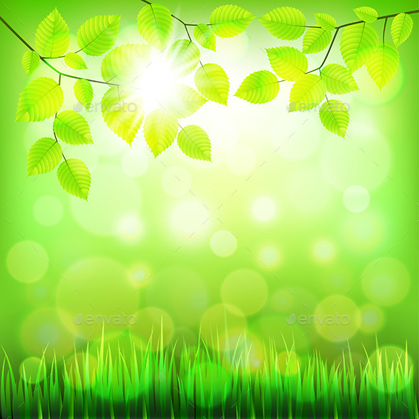 Summer Nature Background with Green Foliage - Landscapes Nature