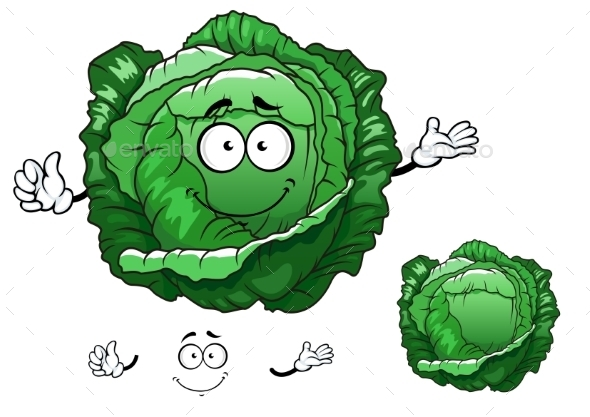 Cartoon Crunchy Cabbage Vegetable Character - Food Objects