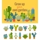 Home Cactus Garden Poster - GraphicRiver Item for Sale
