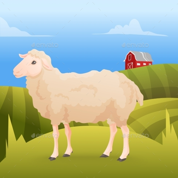 Sheep Standing on Grass with Farm - Animals Characters