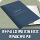 Bi-Fold Business Brochure - GraphicRiver Item for Sale