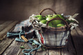 Basket with Apples - PhotoDune Item for Sale