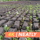 Peat Fuel Drying - VideoHive Item for Sale