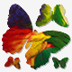 Butterflies Transitions - VideoHive Item for Sale