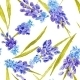 Watercolor Floral Texture With Provence Flowers - GraphicRiver Item for Sale