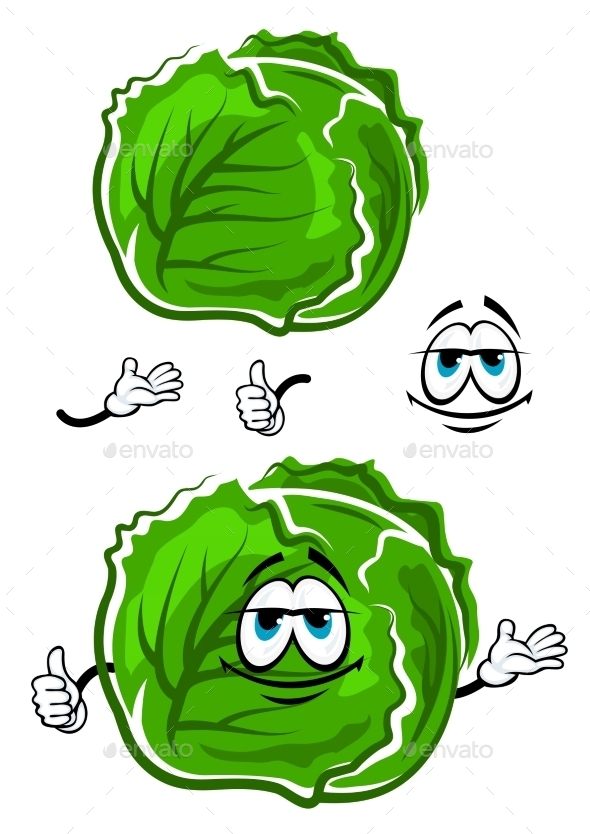 Green Cabbage Cartoon Character With Thumb Up - Food Objects
