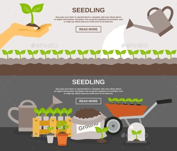 Seedling Banner Set - Flowers & Plants Nature