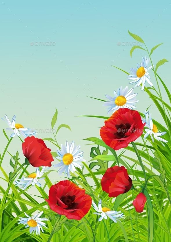 Summer Flower Flyer  - Flowers & Plants Nature