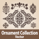 Ornament Collection - GraphicRiver Item for Sale