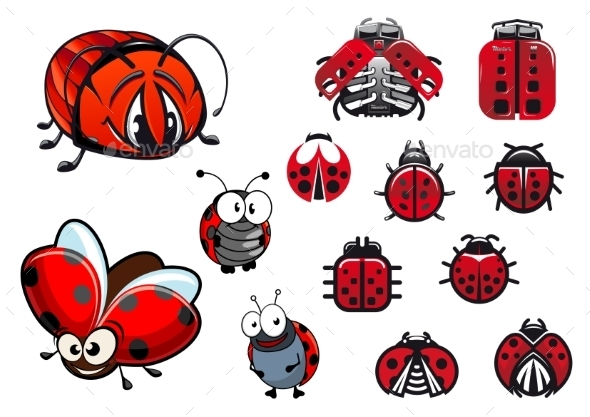 Ladybugs, Ladybirds And Beetles Cartoon Insects - Animals Characters
