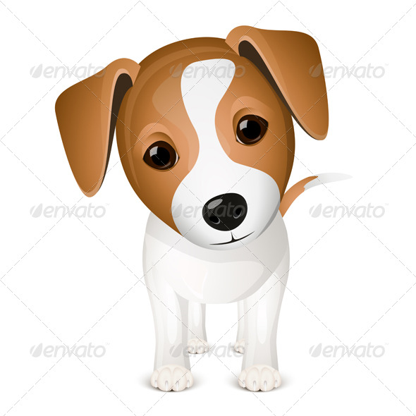 Little jack russel - Animals Characters