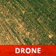 Wheat Field from Above - VideoHive Item for Sale
