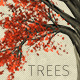 Zelkova Serrata Trees - GraphicRiver Item for Sale