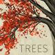 Zelkova Serrata Trees - GraphicRiver Item for Sale